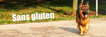 croquette pour chien Dog Lovers Gold In Balance au poulet sans gluten