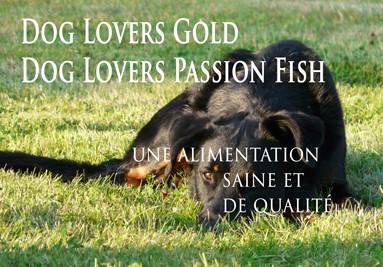 Dog Lovers Gold une alimentation saine pour un chien sain